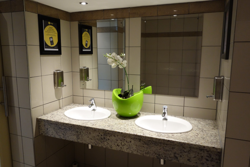 Orchids in the washrooms at George Airport